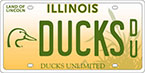 Illinois License Plate