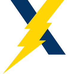 Lightning bolt signifies speed of transaction